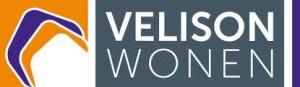 Logo Velison
